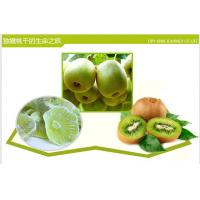 fresh Kiwi fruit,kiwi fruit slice, Sweet Dried Kiwi, Green Kiwi Fruit,qiyiguo