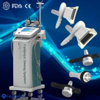 Quality Vacuum Cryolipolysis Slimming Machine / Fat Freeze with OEM & ODM Service wholesale