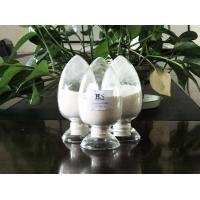 Quality Chondroitin Sulfate Sodium Extracted from Marine Cartilages by GMP Manufacturer with Competitive Price wholesale