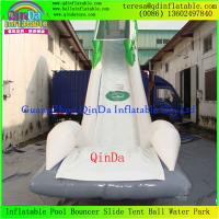 Quality Enjoy Giant Inflatable Water Slide For Adult, Inflatable Toy, Adults Inflatable Slide wholesale