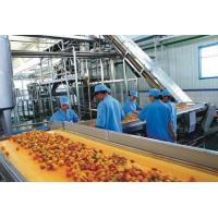 Fruit and vegetable juice processing machinery