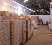 Quality Newsprint paper wholesale