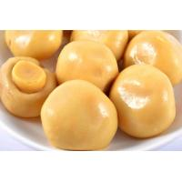 Quality 200g High Grade Canned Champignon Mushroom , Pickled Mushrooms Canning wholesale