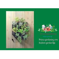 Quality Indoor Hanging Flower Baskets , Versatile Wall Hanging Baskets wholesale