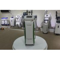 Quality Big size handle 3d cryolipolysis equipment cryolipolysis fat removal machine wholesale