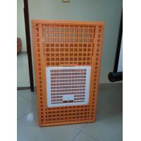 China Best selling plastic chicken transport coop in Africa , chicken transportion cage on sale