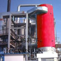 Quality Electric Gas Fired Thermal Oil Boiler 1.6 Mpa With Horizontal And Vertical wholesale