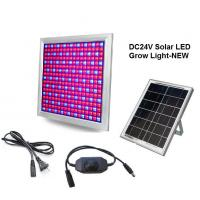 Quality DC24V Solar LED Grow Light 58W Dimming Red+Blue Full spectrum for Vegetable and Flower wholesale