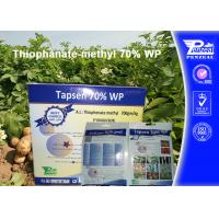 Quality Off - White Powder Systemic Fungicides Thiophanate - Methyl 70% WP wholesale