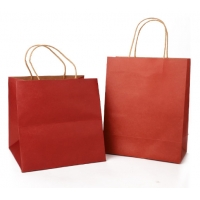 China Biodegradable CMYK Color Foldable Paper Bag on sale