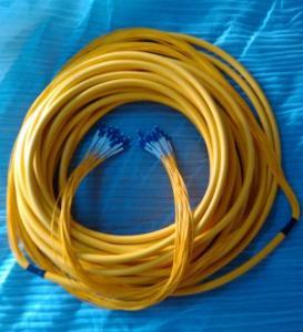 Quality 24core LC-LC SM multi-core fiber patch cord/distribution cable with 2m split per end wholesale