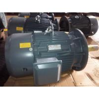 Cheap 6 / 8 Pole 18.5KW / 22KW High Temperature Electric Motor 1000 rpm / 750 rpm for sale