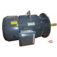 High Temperature Resistant Three Phase Asynchronous Motors H132 cast iron frame