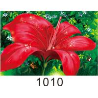 Quality 0.6mm PET+157g Coated Paper 3D Lenticular Pictures With 40*60cm Size wholesale