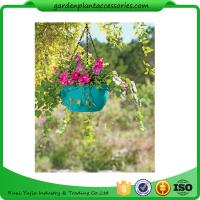 Quality Colorful ABS Plastic Hanging Pots Includes Hanging Chain With Hook wholesale