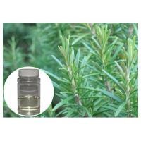 Cheap Oxidatant Resistance Plant Extract Powder Colorless Rosemary Essential Oil For for sale
