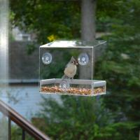 Quality Wholesale Large Window Bird Feeder - Free Detachable Tray Acrylic Plastic bird feeder with water drain holes wholesale