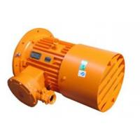 Quality YB2 series flameproof three phase asynchronous motor explosion-proof motor wholesale