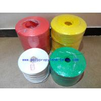 Quality Baler Rope Coloured Garden Agricultural Twine Customized One Year Warranty wholesale