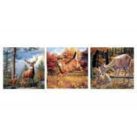 Quality Custom 16x16 Inches 3d Lenticular Photo Flowers & Animals Mounted Wall Art Print wholesale