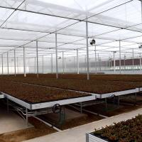 China High-Tech Greenhouse Ebb & Flow Rolling Benches Movable Seedbed on sale