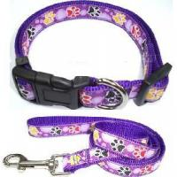 Dog Collar and Leash (A1205)