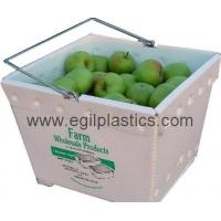 Quality Fruit and Vegetable Plastic Packaging Box wholesale