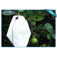 Quality Nonwoven Agiculture Plant Grow Bags For Fruit Growth and Protection , Potato Grow Bags wholesale