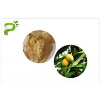 Quality Natural Plant Extract Powder Anti - Inflammatory Mangiferin From Mango Leaf wholesale