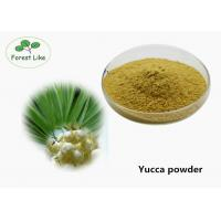 Quality Health Care Plant Extract Powder Yucca Extract Powder Treatement Diabetes wholesale