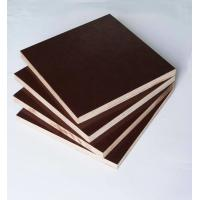 Quality Film Faced Poplar Plywood For Construction, High strength and reusded times wholesale
