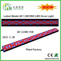 Quality 1200mm Hydroponic Led Grow Light 1200mm For Greenhouse , Energy Saving wholesale