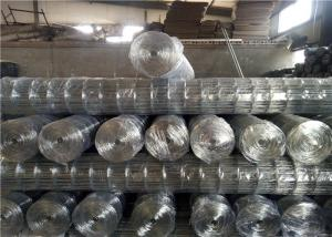 China Building Electric 50 X 50 0.5mm Galvanized Welded Iron Wire Mesh on sale