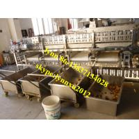 Quality onion sorting machine wholesale