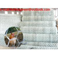 China black plastic poultry net/coated poultry netting/poultry netting wire/2m chicken wire/buy chicken wire fence/chicken kit on sale