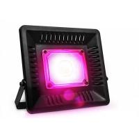 China Indoor Grow Kits 200W Led flood Growth Light For Greenhouse High Bright on sale