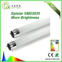 Quality Cold White 6000-6500K 2 feet T8 LED Tube with very strong lumen SMD2835 wholesale
