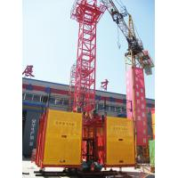 China SS100/100 Adjustable 2 Ton Twin Cage Auto Construction Building Material Hoist Equipment on sale