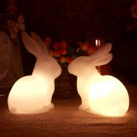 Quality LED bunny/home decor craft gifts/LED Night Light/wedding /valentines