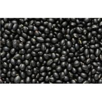 Buy cheap 2016 crop health food black soybean extract powder soy bean extract  isoflavones product