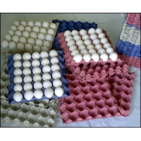 China 34KW Paper Egg Tray Making Machine 7000pcs/H For Wine Packs on sale