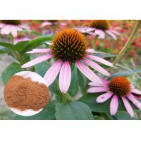 Buy cheap Whole Herb Antibacterial Plant Extracts Echinacea Purpurea Powder Soluble In Water from wholesalers