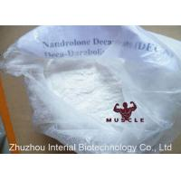 Quality USP Fat Burning Steroids Powder Deca Durabolin Injection For Bodybuilding CAS 360-70-3 wholesale