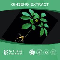 Quality Wholesale supply free sample Ginseng Extract wholesale
