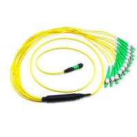 Quality 40G Fiber Mpo To Mpo Cable FC APC 12 Optical Fiber Jumpers 0.35dB Insertion Loss wholesale