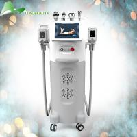 China The best results rf beauty equipment cryolipolysis cryotherapy fat freeze machine on sale