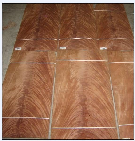 Cheap mahogany crotch veneer veneered plywood mdf for Mahogany door skin