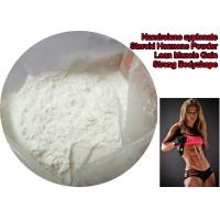 Quality Bulking Cycle Nandrolone Decanoate Steroid Powder / Deca Durabolin Muscle Mass Steroid wholesale