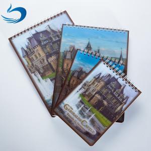 China Custom 3D Lenticular Printing Card Lenticular Plastic Sheet Lenticular Printing Books on sale