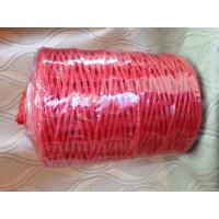 Quality High Strength PP Twine Polypropylene Rope With UV Stabilizers SGS wholesale